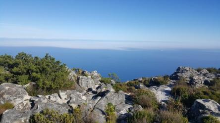 table mountain at top
